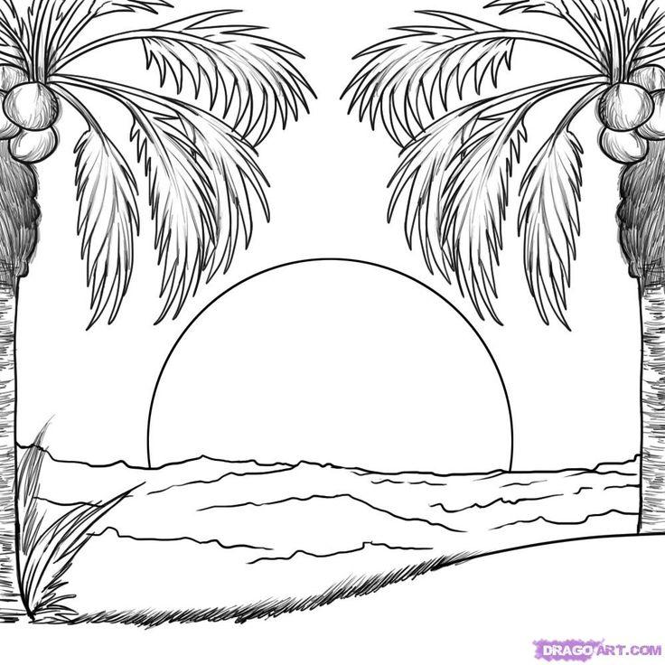 png free At paintingvalley com explore. Palm drawing seashore