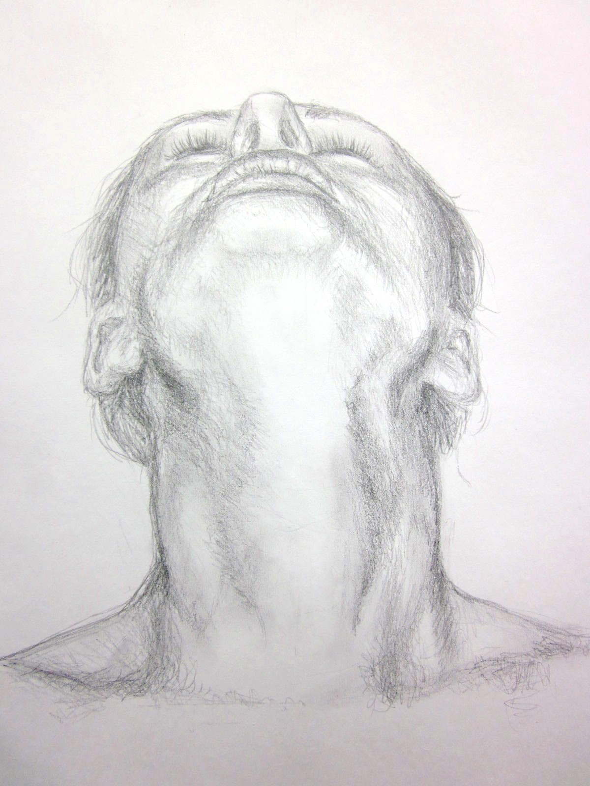 clip art Drawing necks shadow. Neck at paintingvalley com