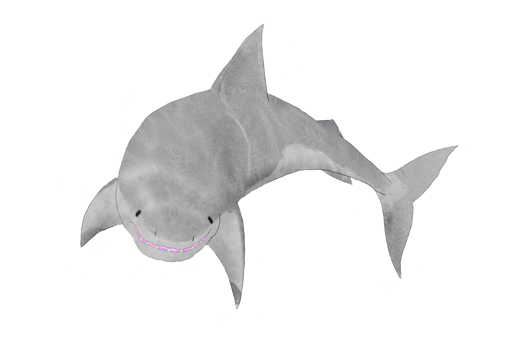 clip transparent Drawing sharks anime. Shark by wolfz on