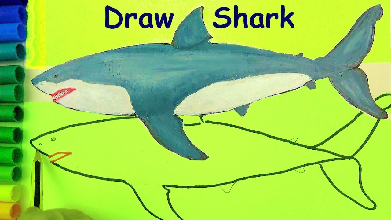 jpg free Draw coloring pages for. Drawing sharks color