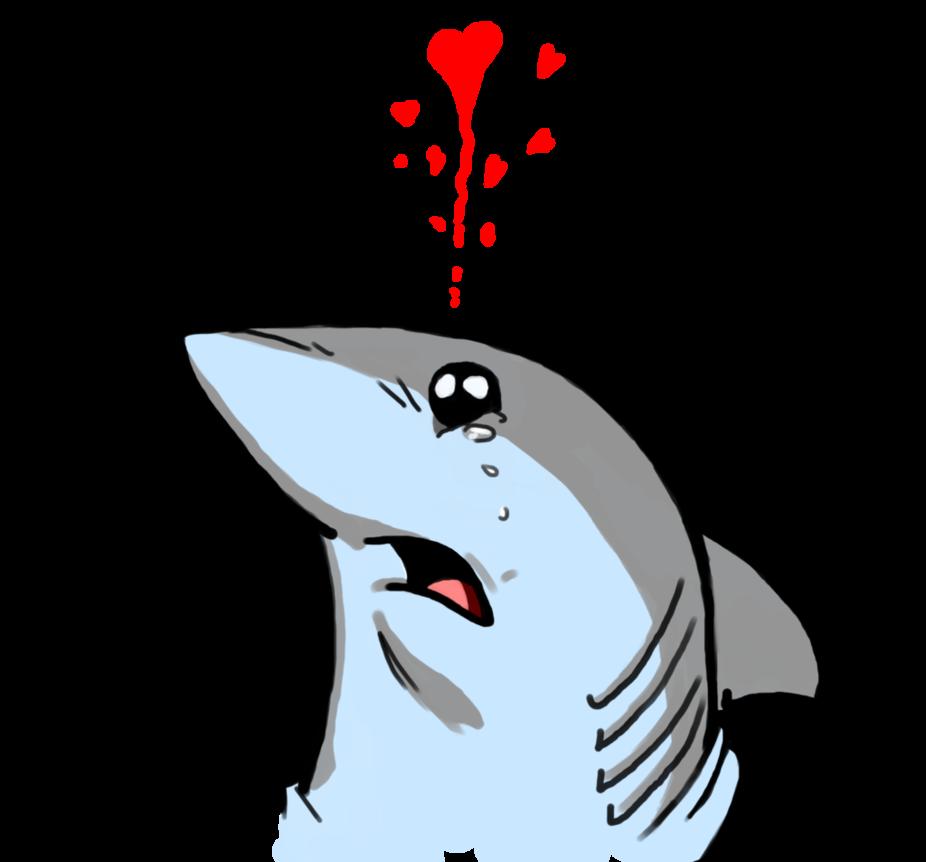 image library library Shark by ashe kai. Drawing sharks cute