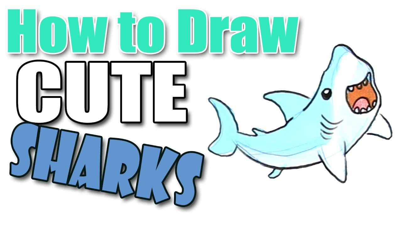 banner library Drawing sharks cute. How to draw