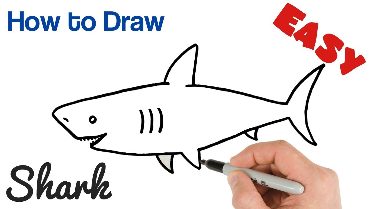 banner black and white library How to draw a. Drawing sharks easy