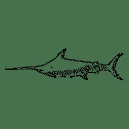 png transparent Hand drawn shark transparent. Drawing sharks lukisan