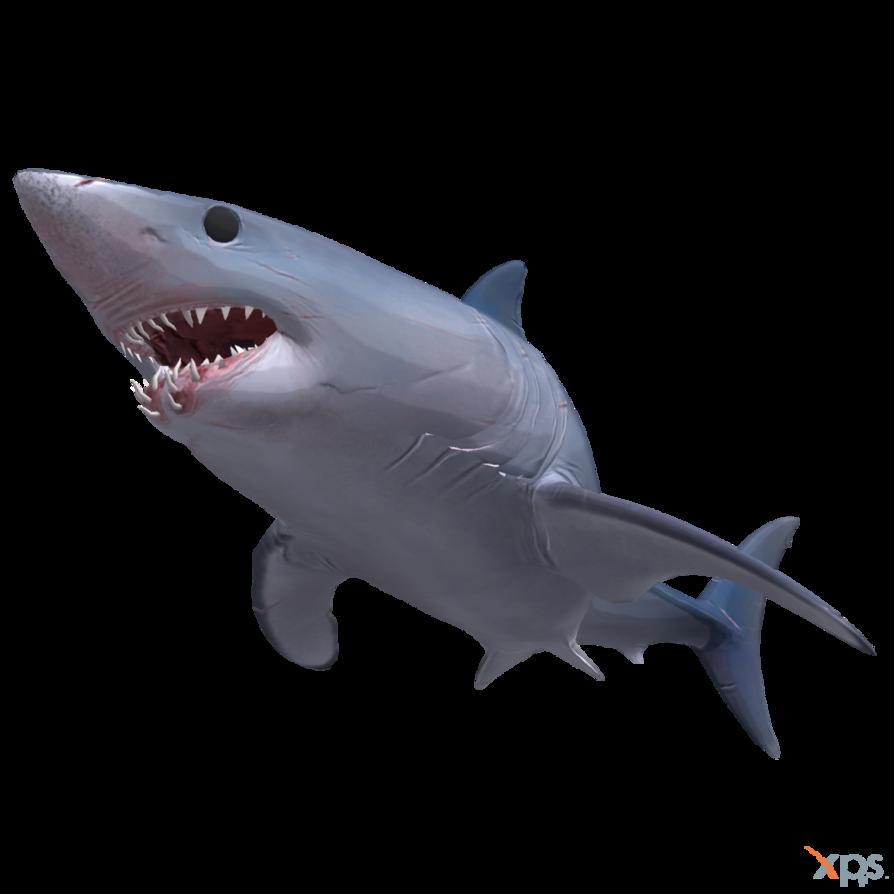 graphic library stock Drawing sharks mako shark. The depth by mrunclebingo