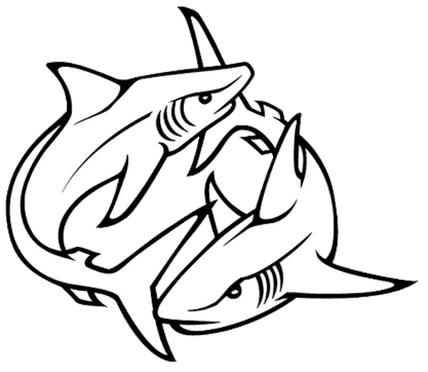 png library stock Drawing sharks outline. Shark fin at getdrawings