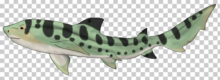 banner library download Drawing sharks zebra shark. Leopard png clipart animal