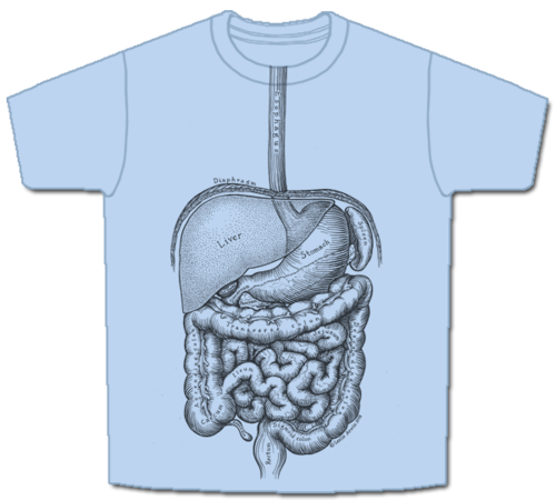 vector black and white download Drawing shirts detailed. Skeletees anatomical t designed