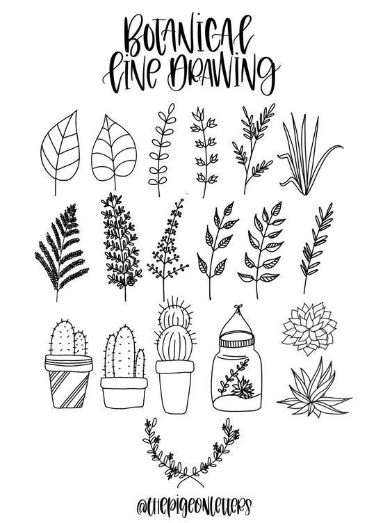 graphic library Drawing signatures vintage doodle. Plant doodles bullet journal