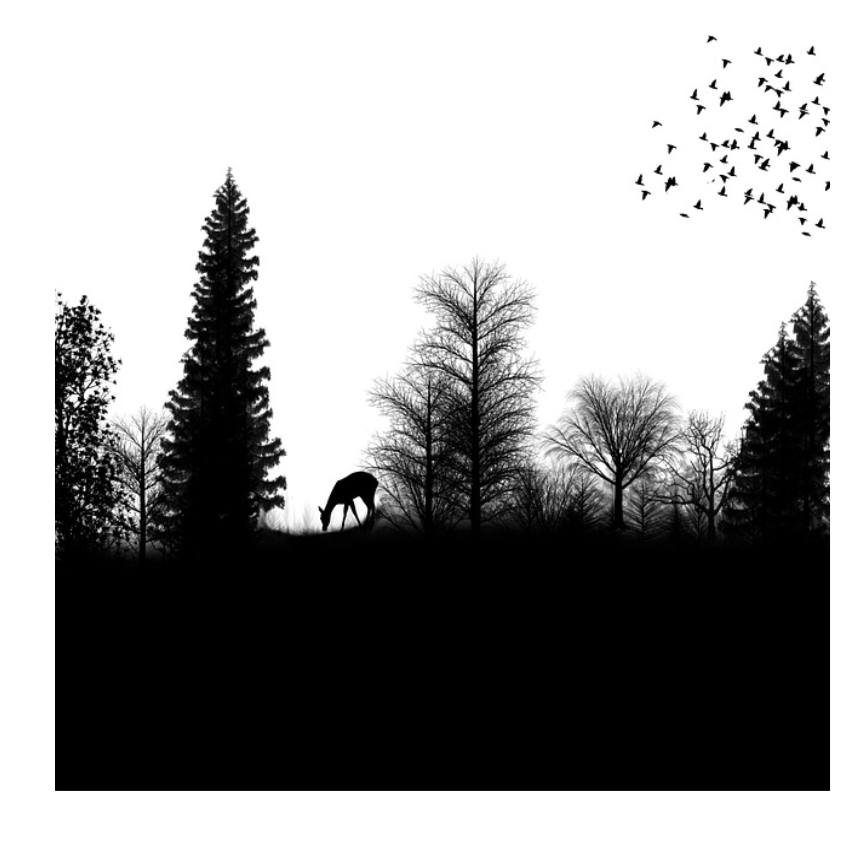 jpg freeuse Drawing silhouette transparent. Forest png download