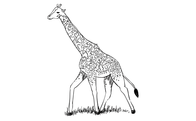 royalty free stock Animals sketchbooknation com how. Drawing necks low angle