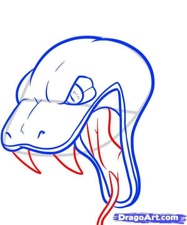 clip art royalty free download How to draw a. Drawing snake head