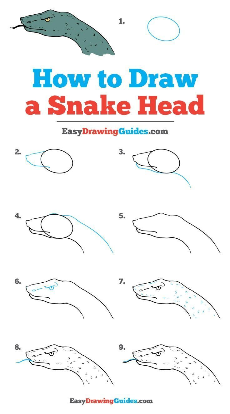 clip transparent download How to draw a. Drawing snake step by
