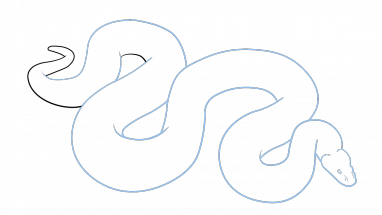 library Drawing snake step by. How to draw a