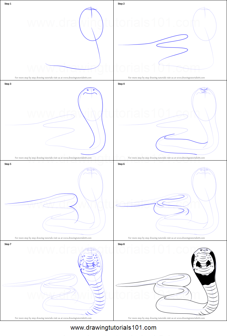black and white download How to draw a. Drawing snake step by