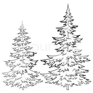 clip art library Drawings of old pine. Drawing snow tree