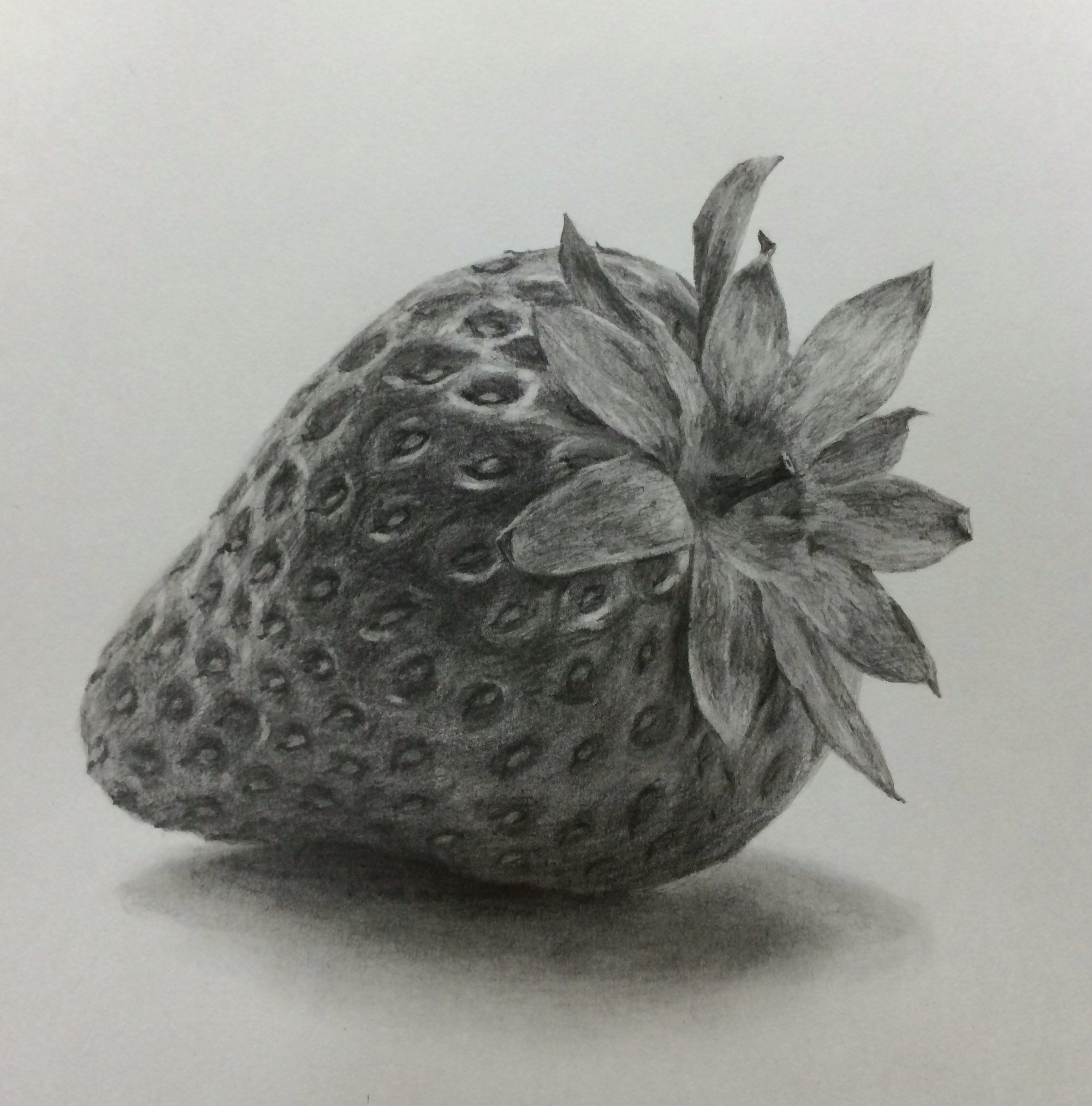 banner transparent library Drawing strawberries charcoal. Pin by on in
