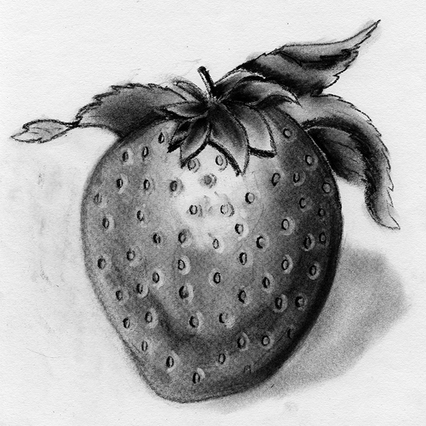 png royalty free stock Drawing strawberries charcoal. Fruit on pantone canvas