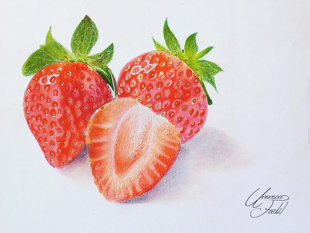 graphic black and white Drawing strawberries colored pencil. Fruits pencils by