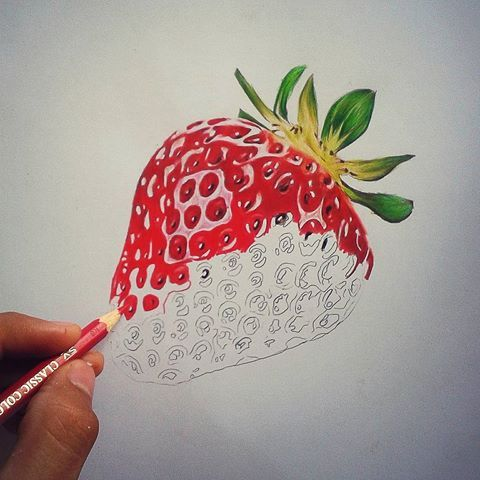 png freeuse download Billedresultat for strawberry brain. Drawing strawberries colored pencil