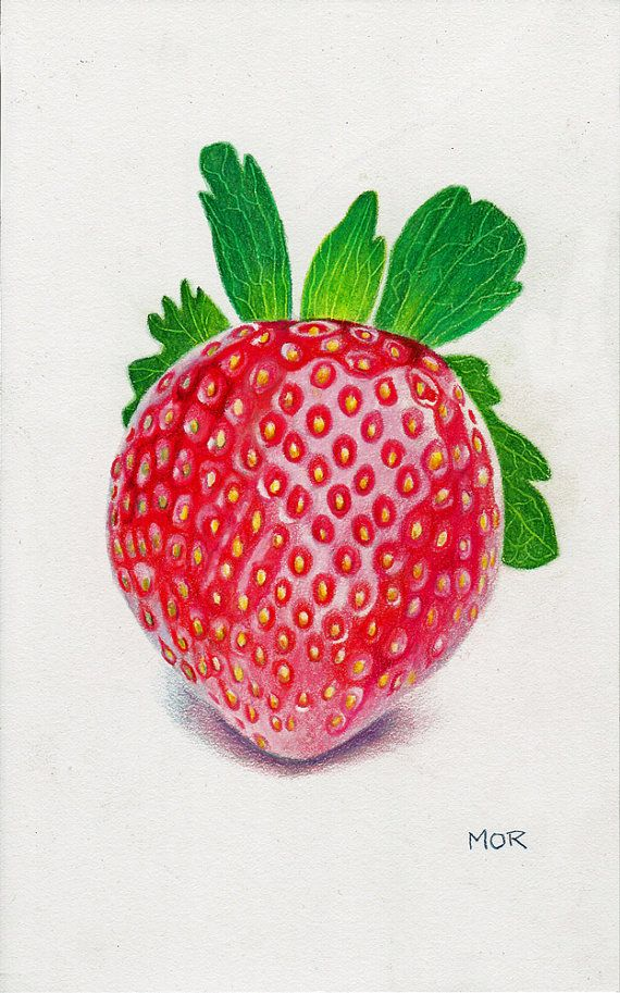 banner transparent stock Strawberry colored pencil on. Drawing strawberries colour