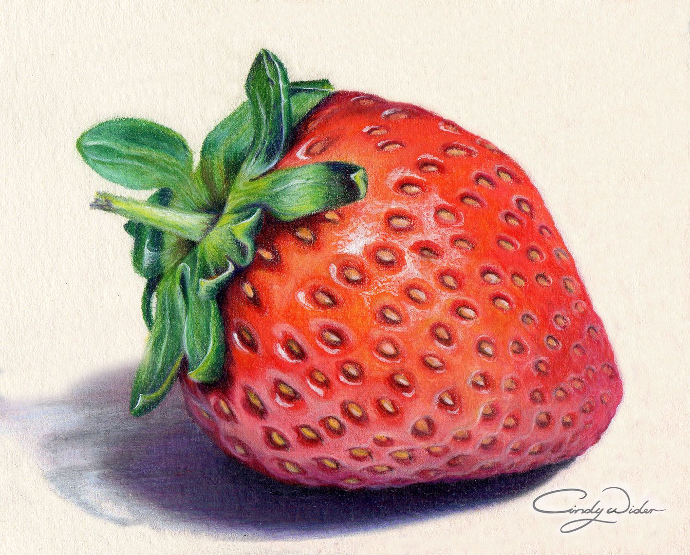 png black and white stock Drawing strawberries colour. This strawberry was created