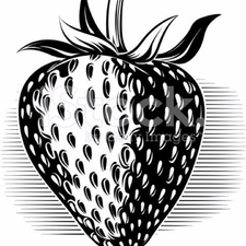 svg black and white library Drawing strawberries detailed. How to draw steps