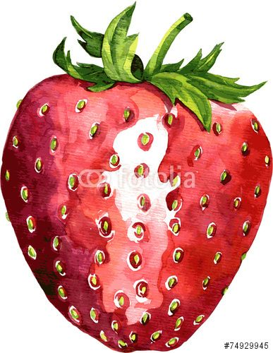 jpg black and white library Drawing strawberries detailed. Strawberry google search art