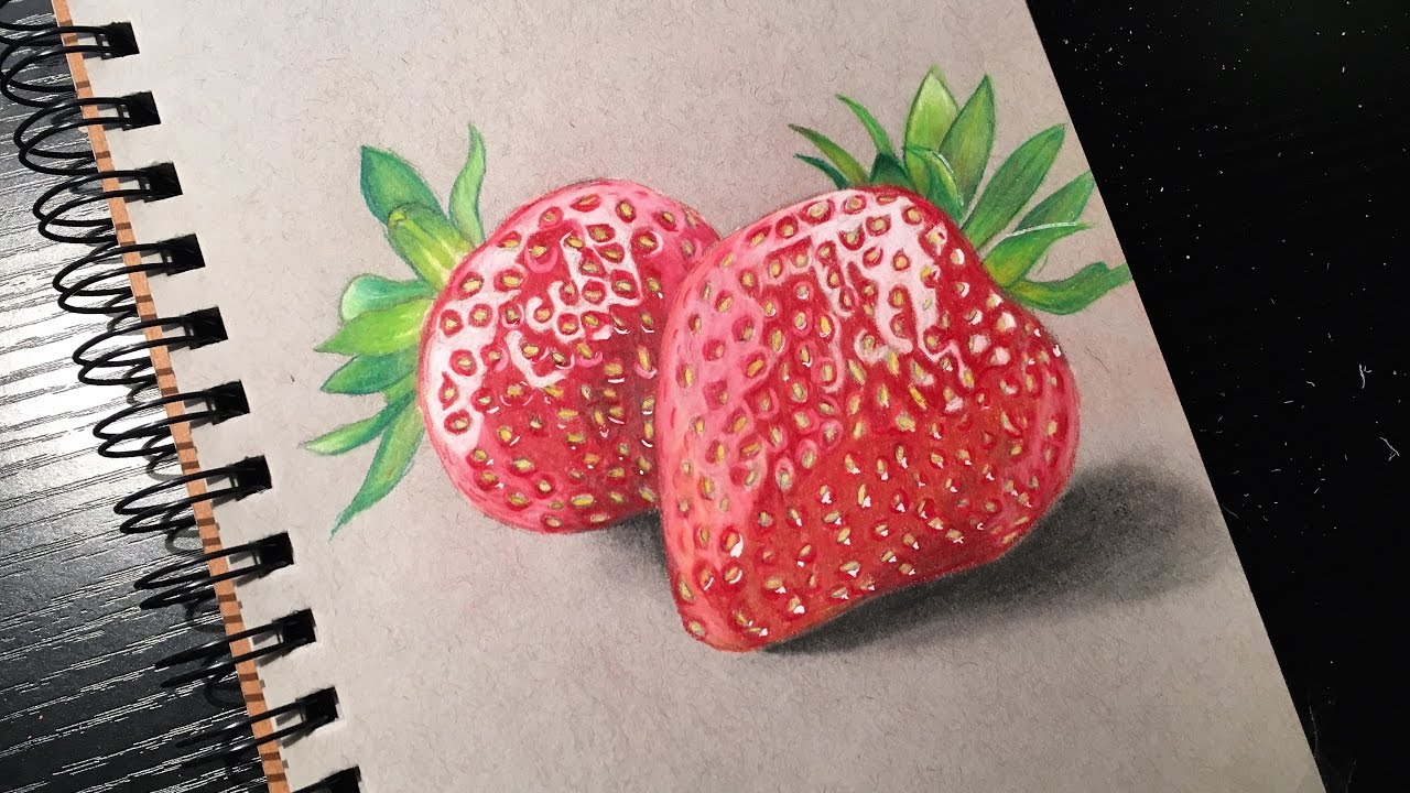 image freeuse Drawing strawberries realistic. Prismacolor pencils time lapse