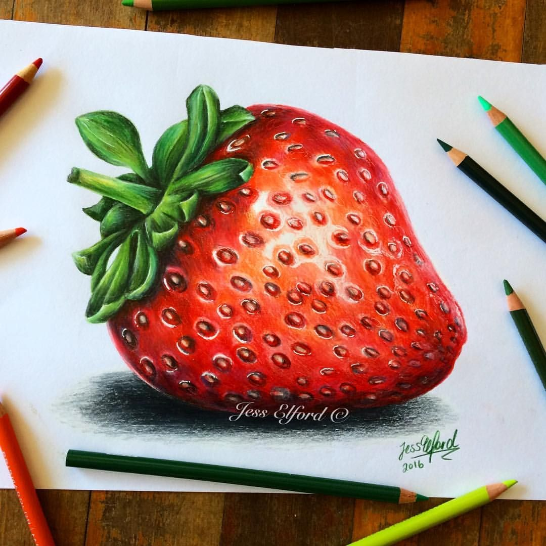 clip freeuse Strawberry by jess elford. Drawing strawberries realistic