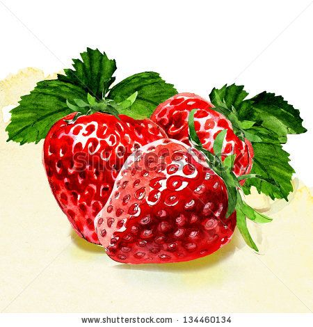 image stock Strawberry illustration jam packaging. Drawing strawberries watercolor