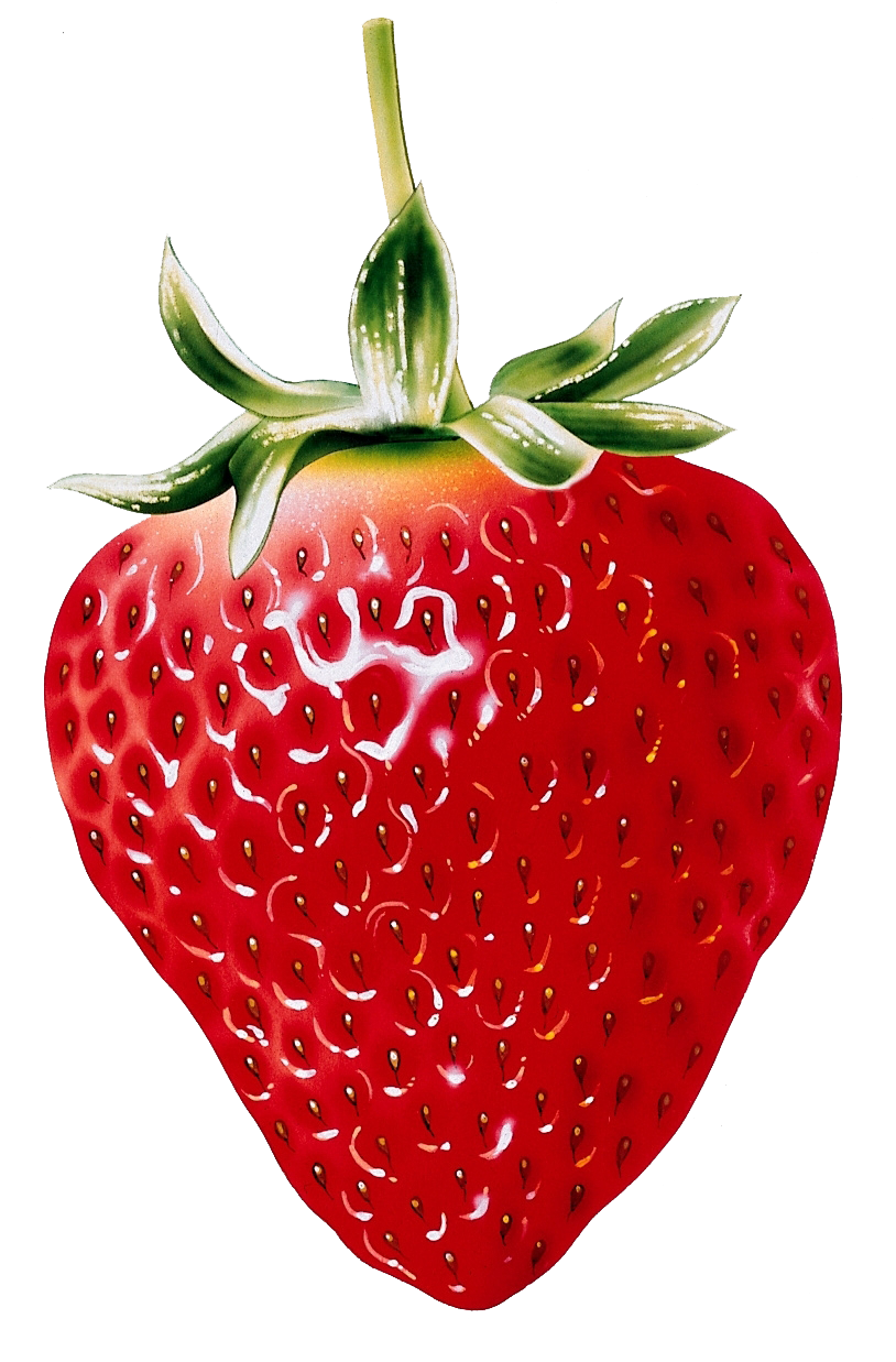black and white download Drawing strawberries wild strawberry. Pin by llitastar on