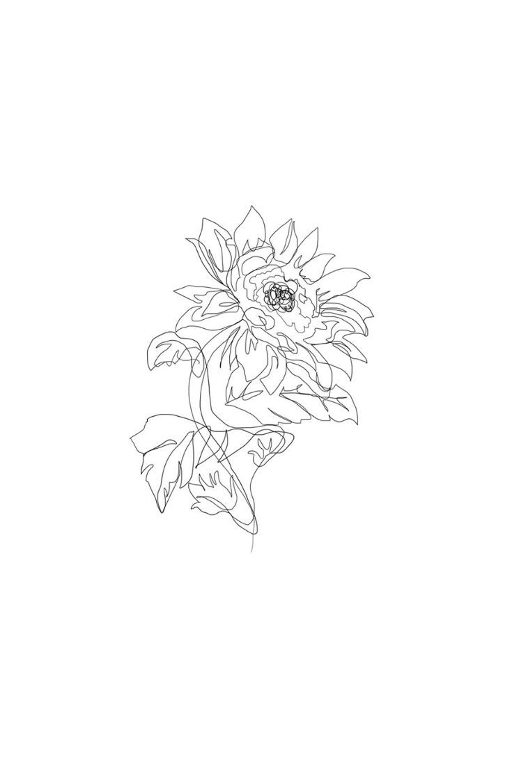 graphic freeuse One Line Sunflower