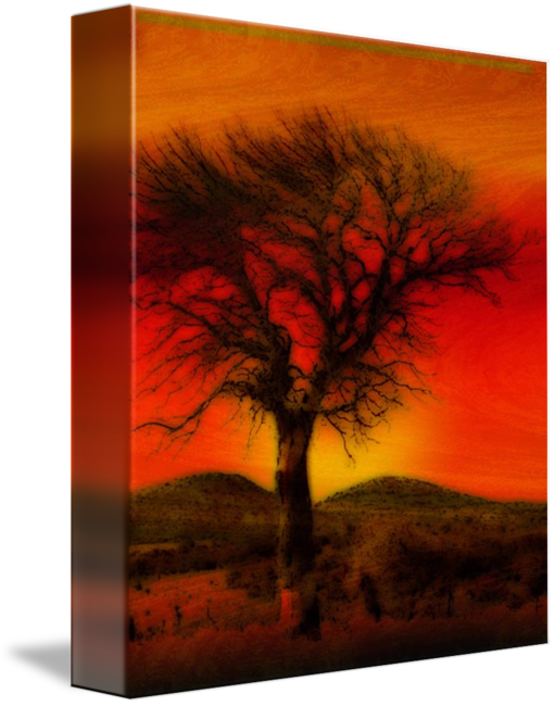 svg stock Oil Pastel Tree in Sunset by Winona Sharp