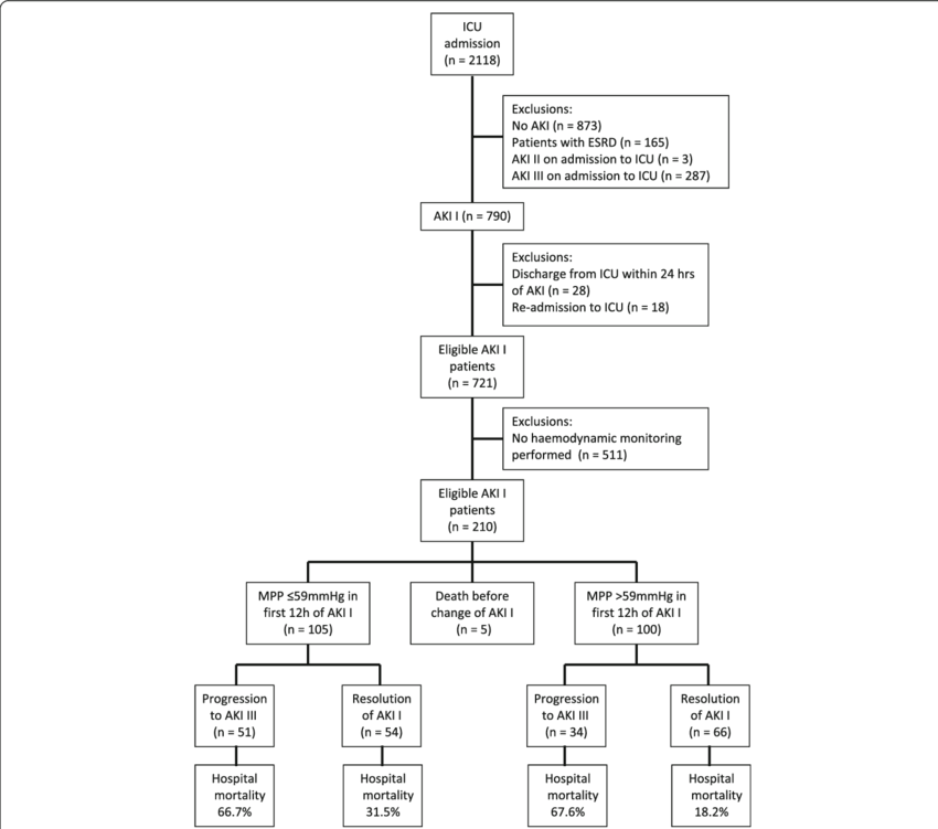 png transparent stock Patient flow aki acute. Drawing terms abbreviations