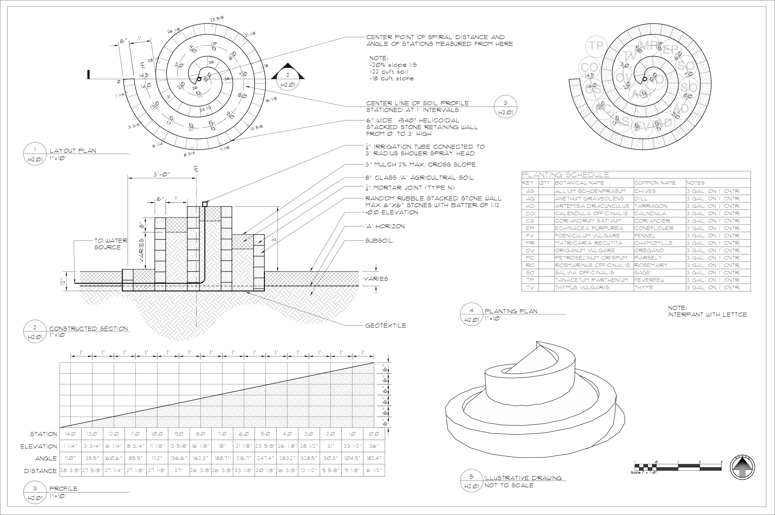 graphic transparent File herb spiral svg. Drawing terms horizon