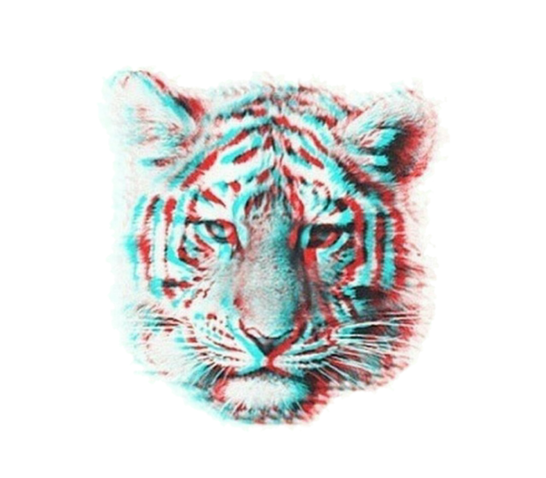 clip royalty free download tiger aesthetic sticker
