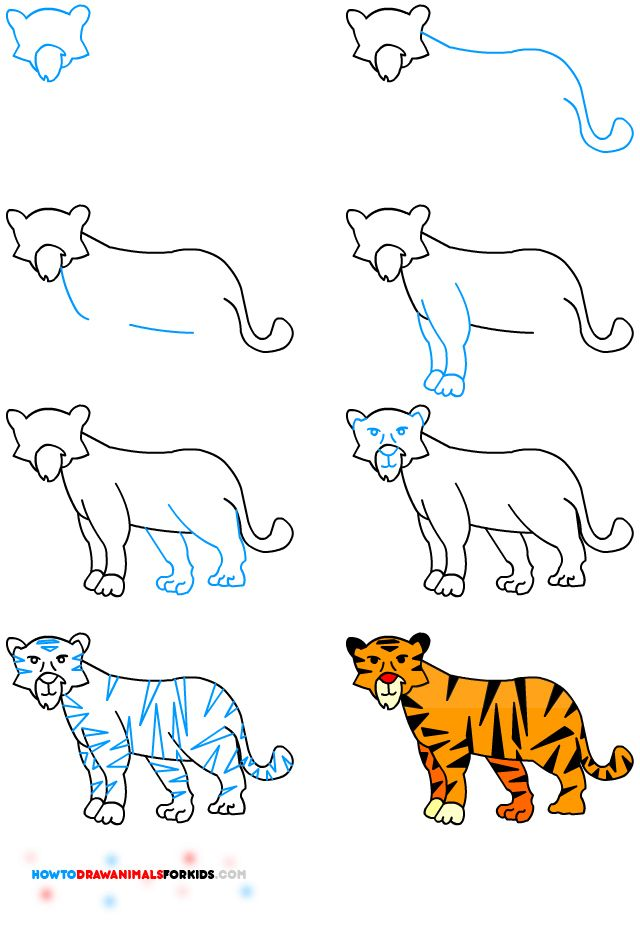 transparent how to draw a tiger children