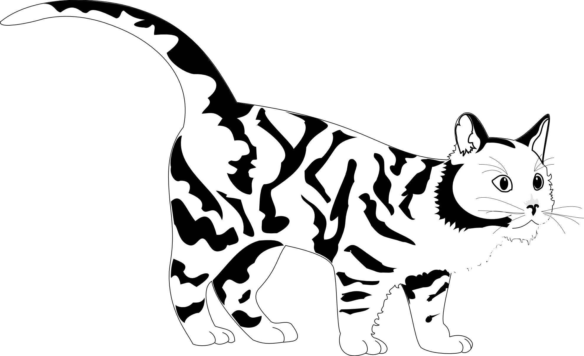 banner freeuse stock Tiger Face Coloring Page