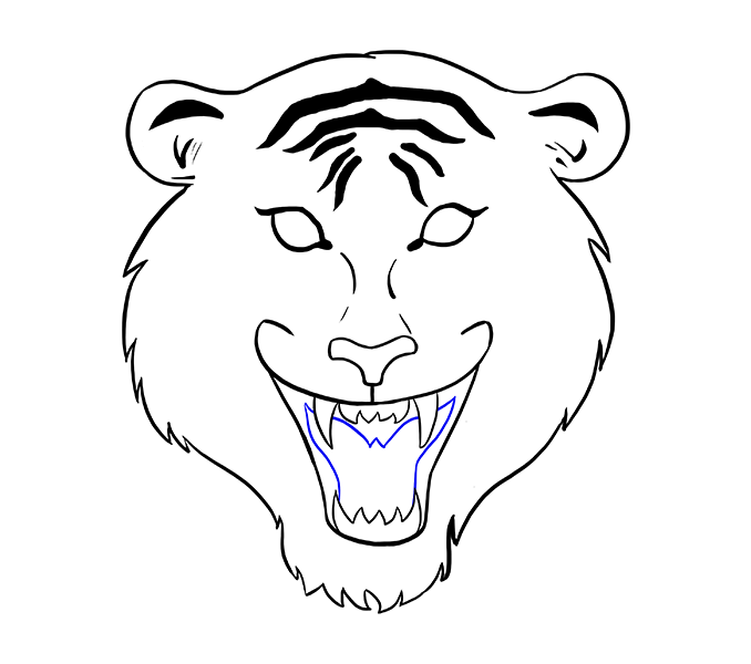 graphic library stock Lion Face Drawing Step By Step at GetDrawings