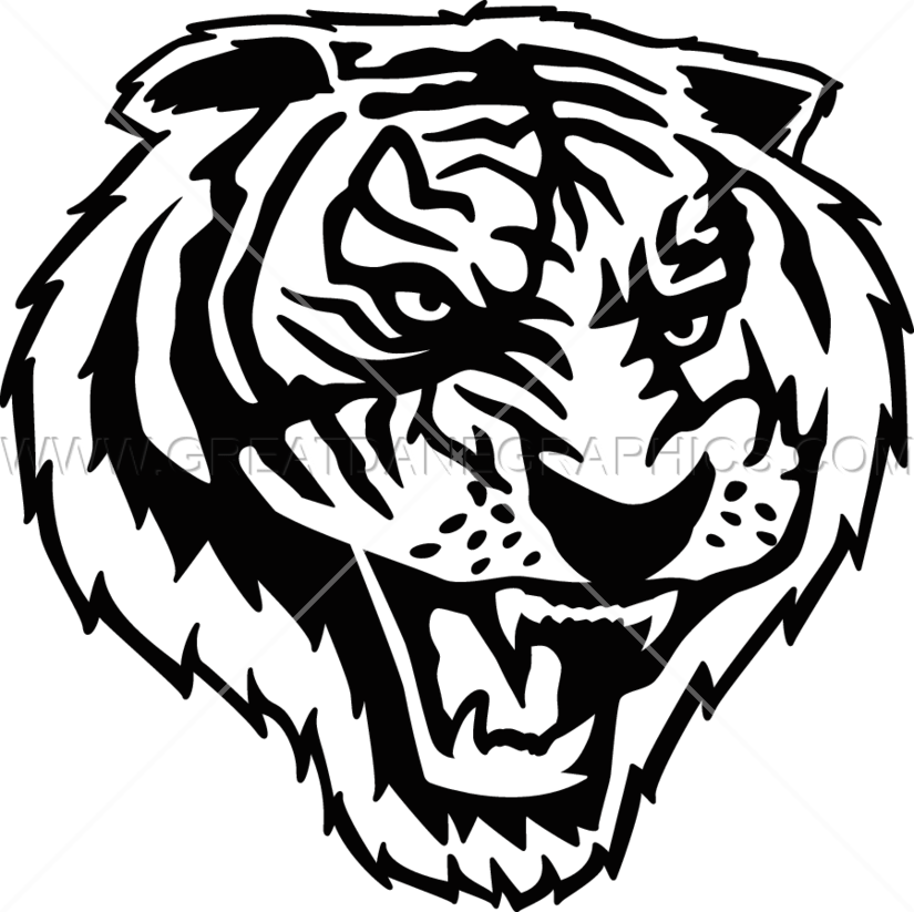 transparent library Tiger Roar Drawing at GetDrawings