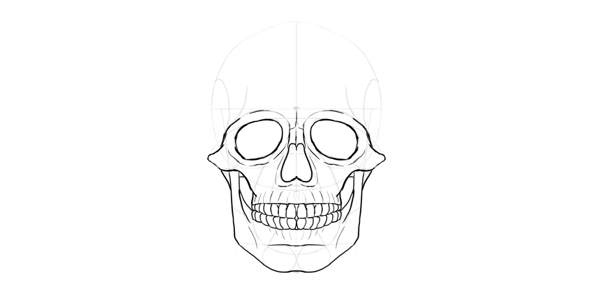 clipart transparent library Drawing tooth front. How to draw a