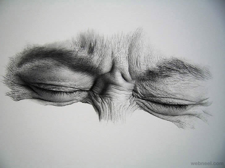 banner black and white Drawing topic pencil.  realistic drawings and