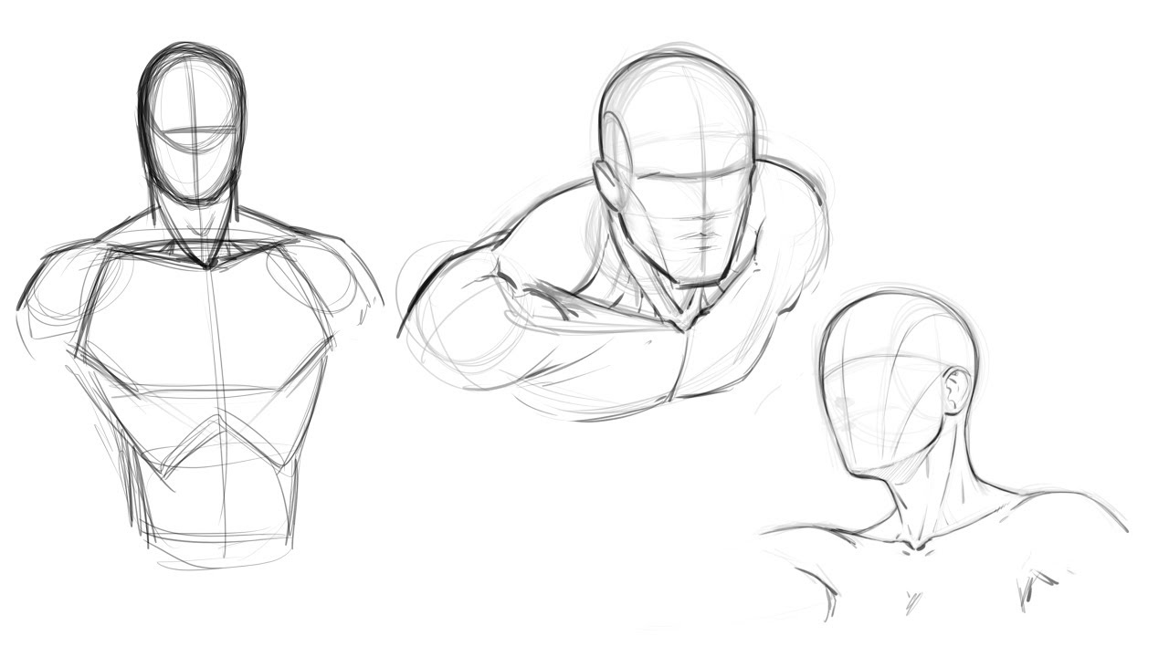 clip art royalty free library Drawing torso. How to draw comics.