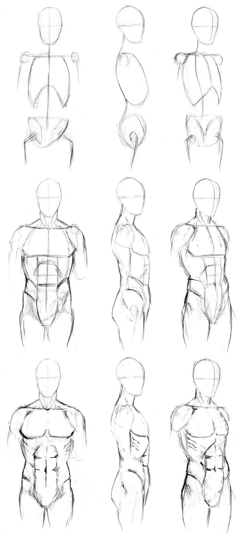 svg black and white stock Drawing torso. Basic male tutorial by.