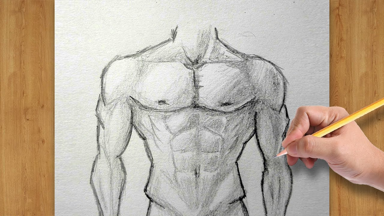 banner transparent How to Draw Male Body