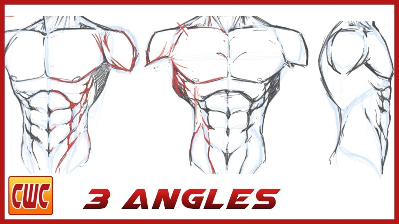 jpg How to draw the male torso for comics step by step
