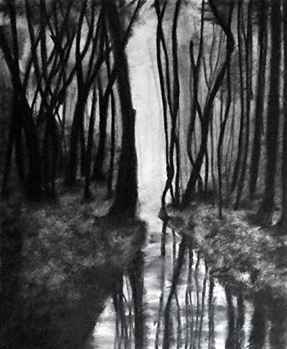 svg freeuse Amazon com x through. Drawing charcoal landscape