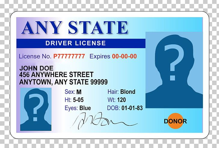 graphic free stock Car driver s driving. Drivers license clipart