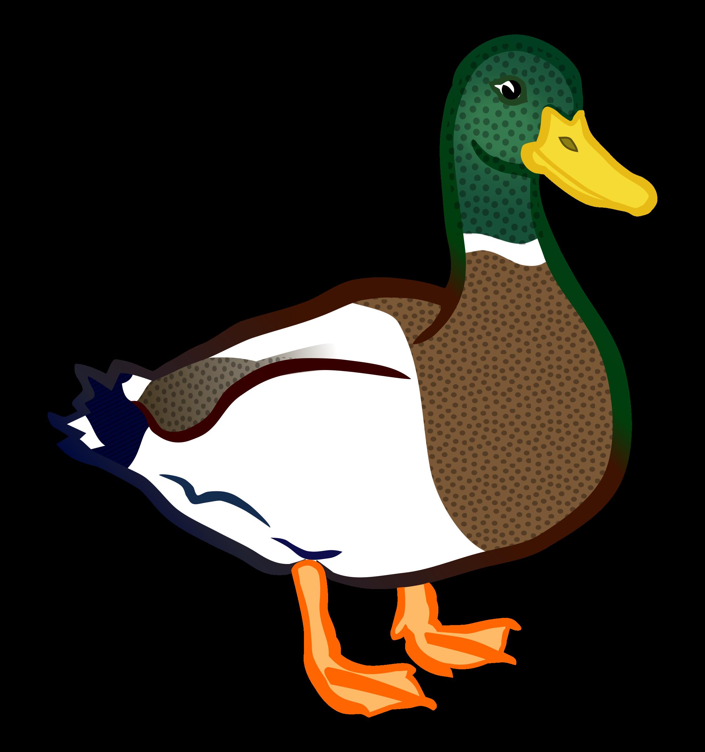 png transparent stock Logs clipart bird. Duck coloured big image.